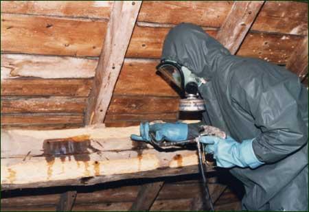 Traitement des bois charpentes for Traitement bois exterieur naturel